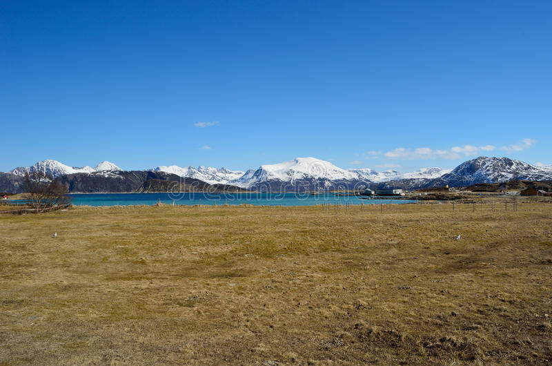 Длинное поле весны с фоном фьорда и горы стоковые фото