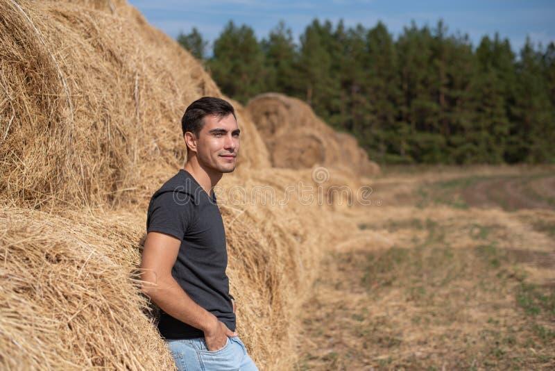 длинной с Полу портрет усмехаясь фермера человека в стойках серых футболки с его задней частью к сену смотрит в поле, haymaking,  стоковые фото