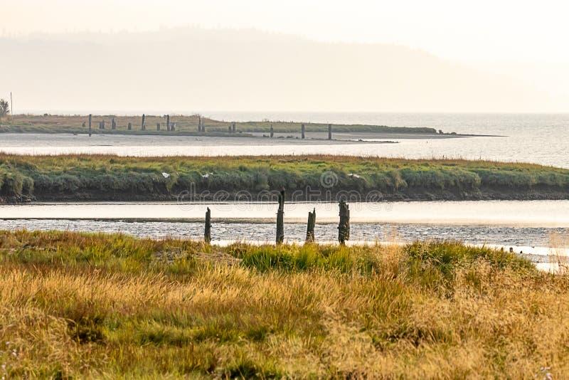 длинные стренги болота и земли вдоль канала клобука стоковая фотография rf