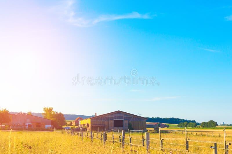Длинный амбар на поле стоковое изображение rf