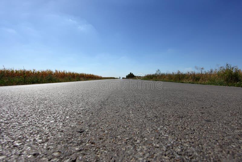 Длинняя прямая дорога Стоковая Фотография