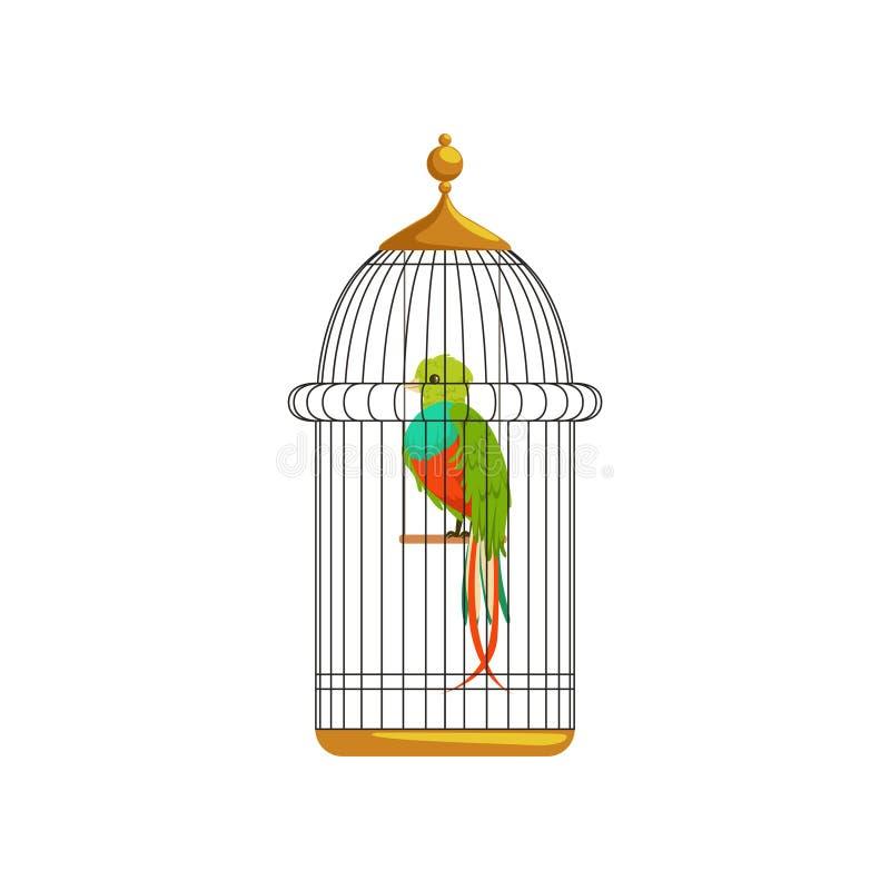 Длинн-замкнутая тропическая птица с красочными пер в металлической клетке Домашнее животное шаржа Плоский дизайн вектора для люби иллюстрация вектора