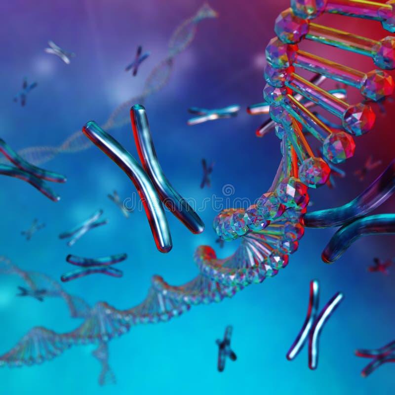 Дна хромосома стоковое изображение