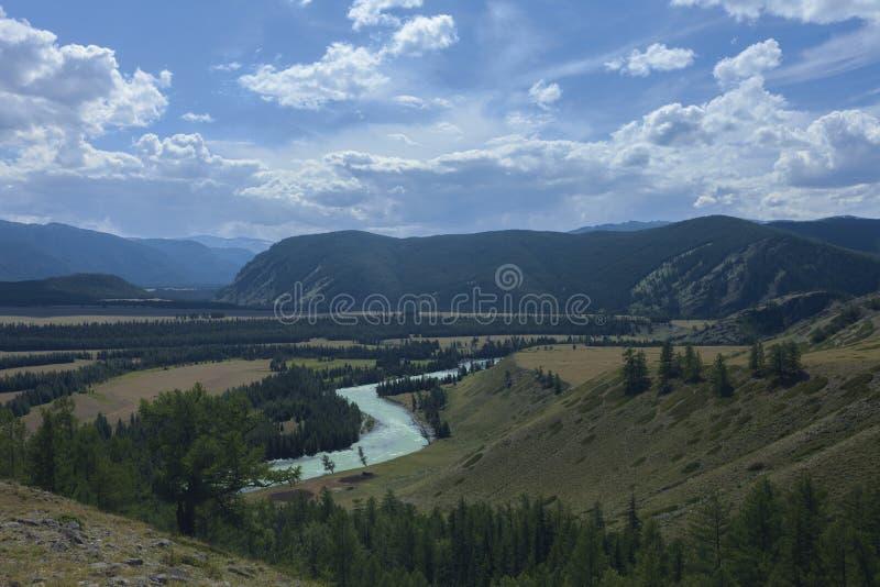 дни altai продолжают лето гор Река Argut Красивейший ландшафт гористой местности russ стоковое изображение