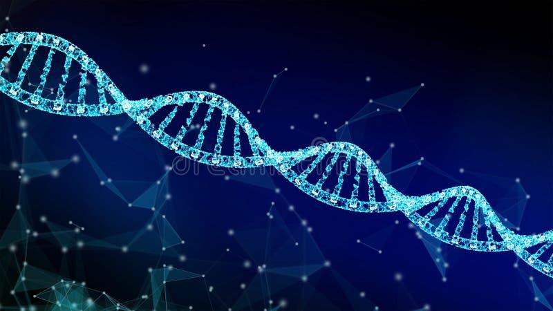 ДНК, медицина винтовой линии модельная и линии сетевого подключения изолированная на голубой предпосылке Абстрактная футуристичес бесплатная иллюстрация