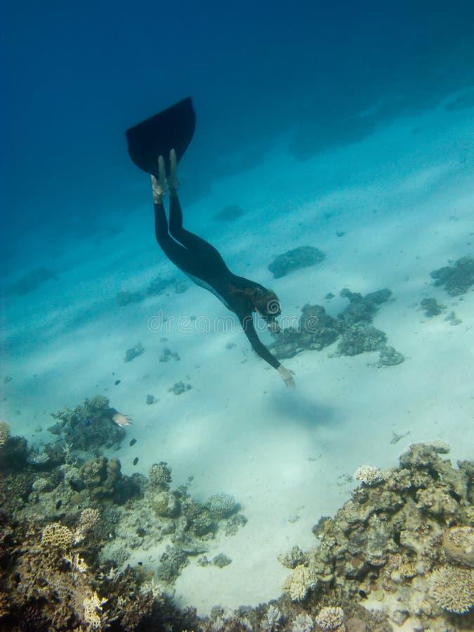дно ныряет море девушки freediver к стоковая фотография rf