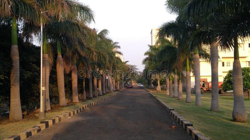 Доброе утро Индия Дорога водя к успеху стоковая фотография rf
