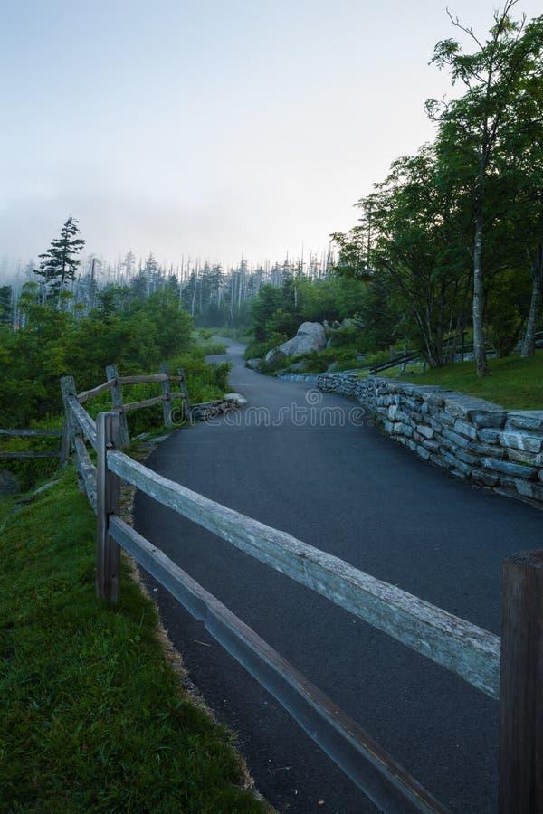 Доброе утро, Клингманс-Купол, Великие дымовые горы стоковое изображение rf