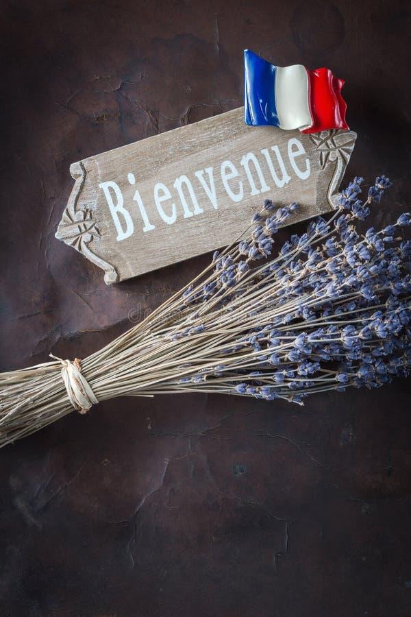Добро пожаловать к Франции стоковая фотография rf