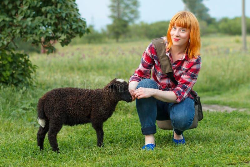 Довольно рыжеволосая молодая женщина с черной овечкой в сельской местности стоковое изображение