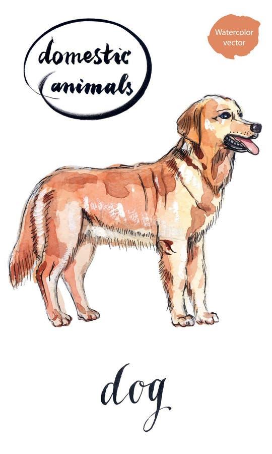 Довольно коричневая собака иллюстрация вектора