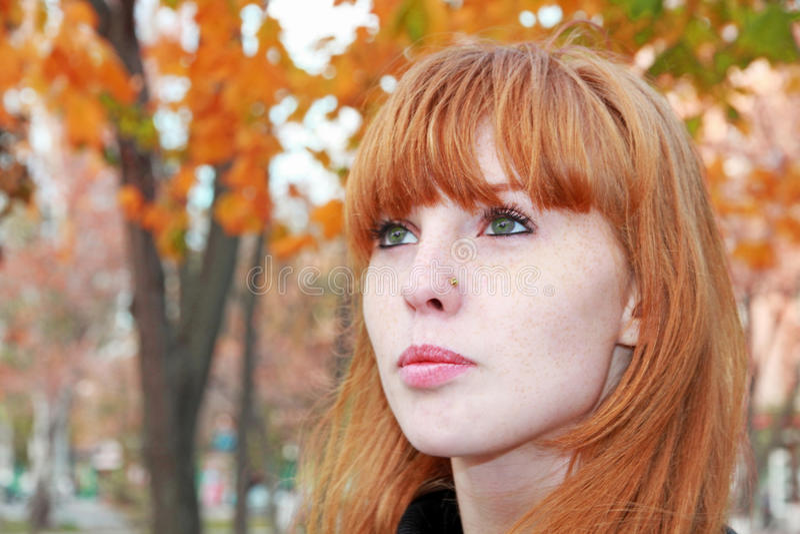 Довольно красная сторона девушки волос при веснушки принятые крупный план стоковые изображения