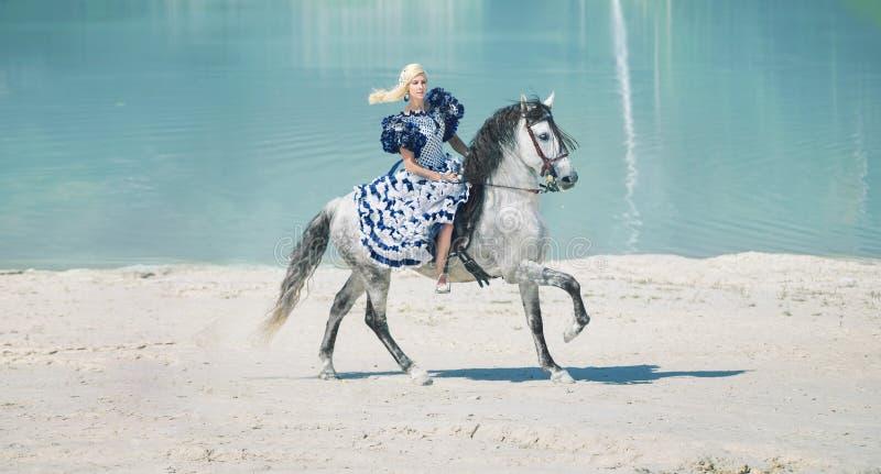 Довольно элегантная дама на лошади стоковое фото