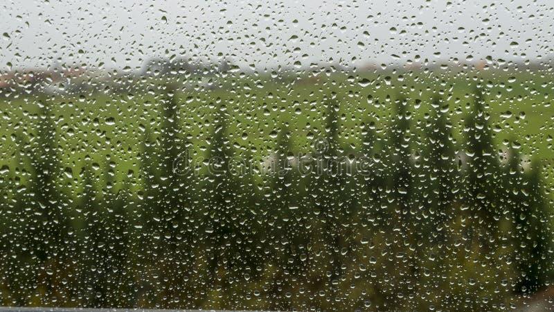 Дождевые капли на окне стоковые фото