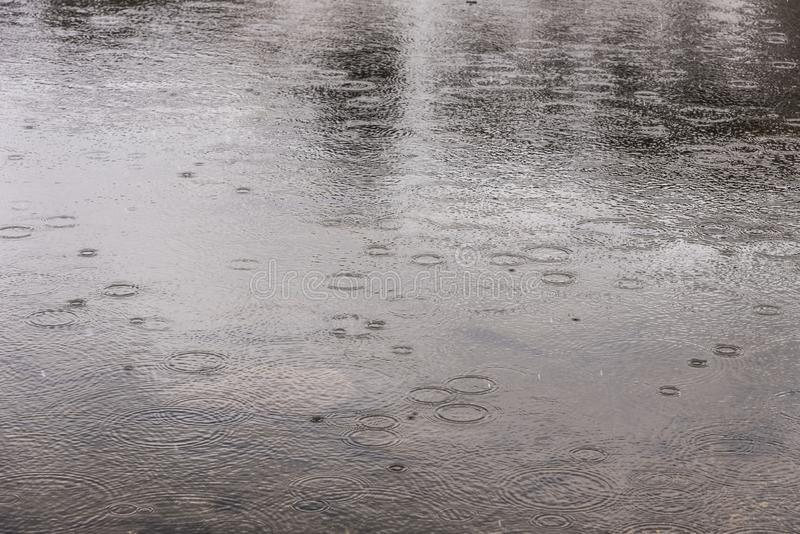 Дождевые капли падая на озеро стоковое изображение