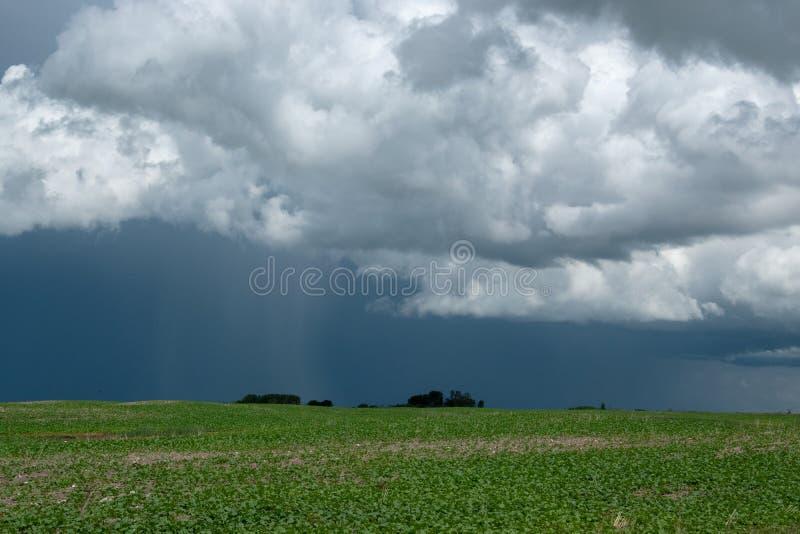 Дождевые облако причаливая над обрабатываемой землей, Саскачеваном, Канадой стоковая фотография rf