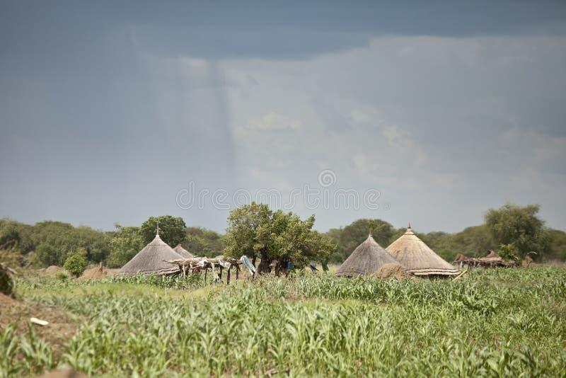 Дождь падая около хат в южном Судане стоковое изображение