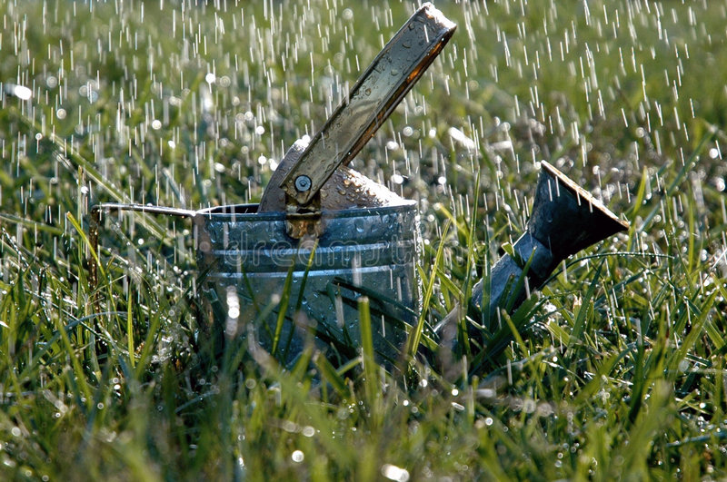 дождь стоковое изображение rf