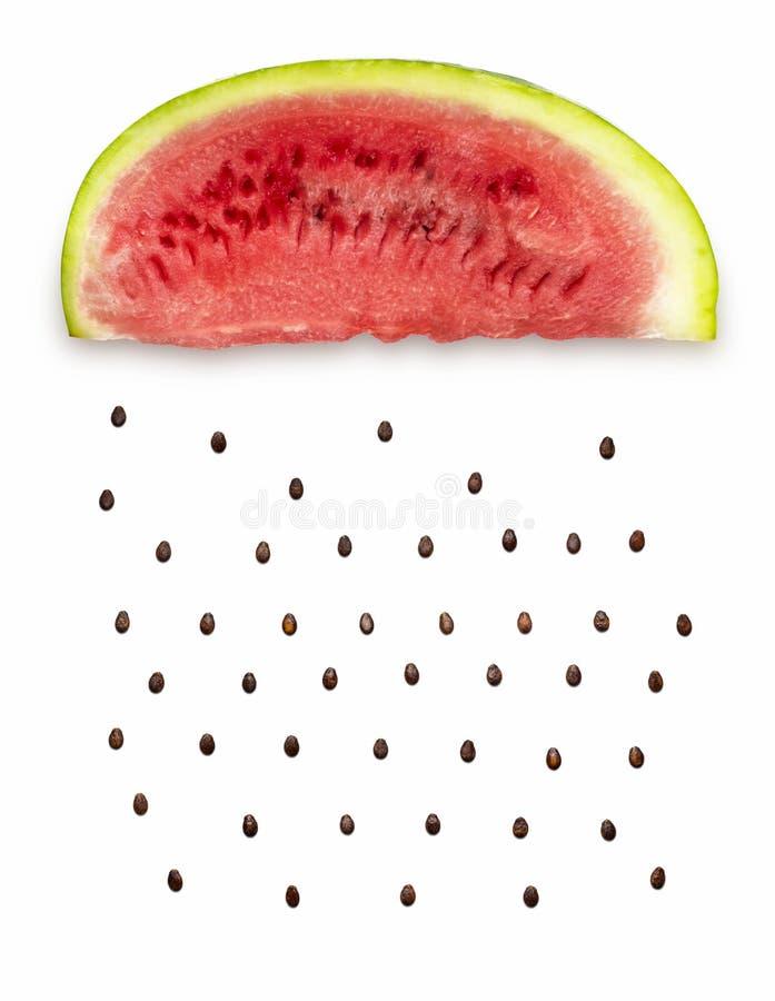 Дождь арбуза стоковая фотография rf