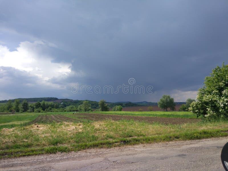 Дождь в установке стоковые изображения