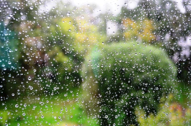 Дождь лета стоковое изображение