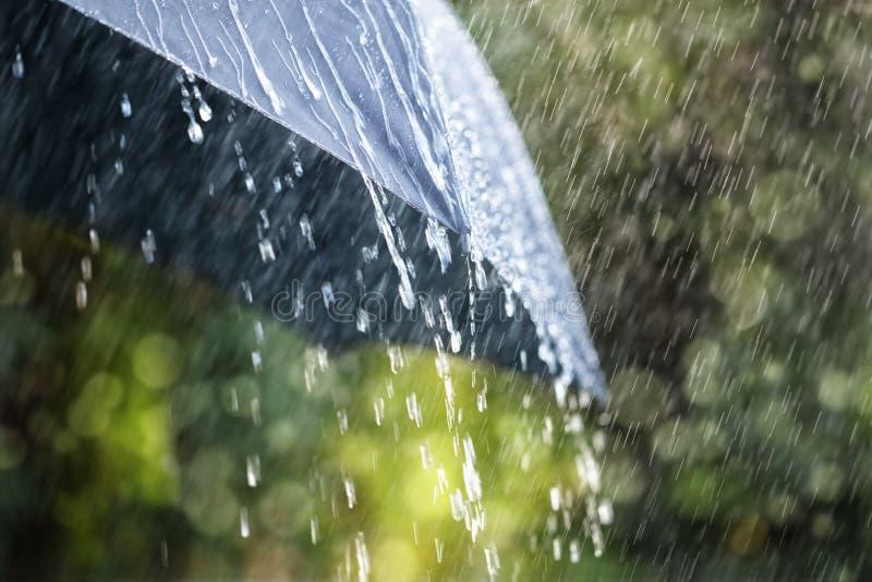 Дождь на зонтике стоковое фото rf