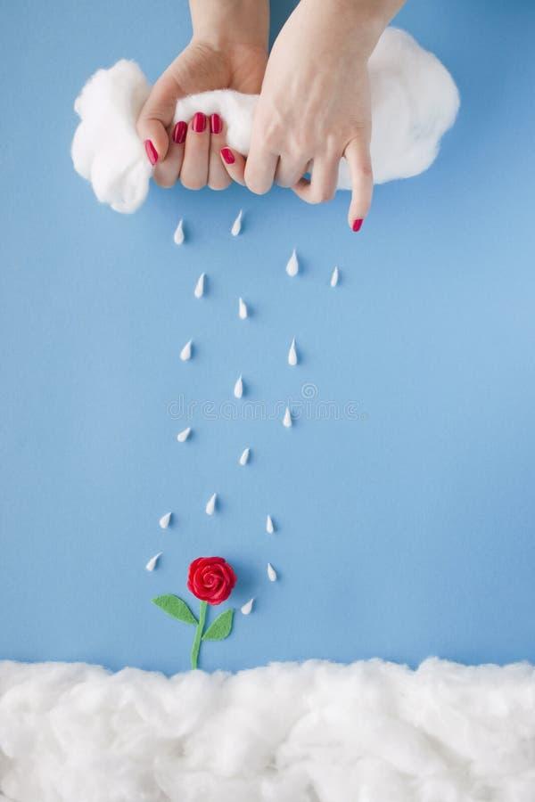 Дождь рая стоковое изображение rf