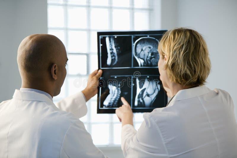 доктора смотря рентгеновский снимок стоковое изображение rf