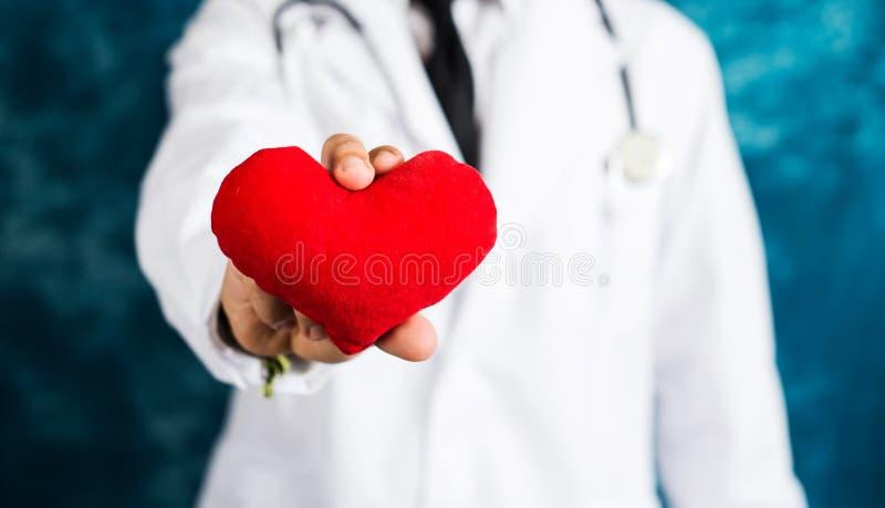 Доктор держа красную игрушку сердца стоковые изображения rf