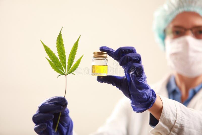 Доктор женщины держа коноплю листает и смазывает альтернативный bamboo поднос спы микстуры деталей ginkgo biloba ванны стоковые изображения