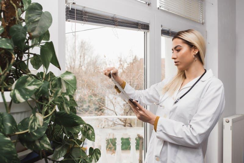 Доктор женщины проверяя тазобедренный рентгеновский снимок фильма стоковые изображения rf