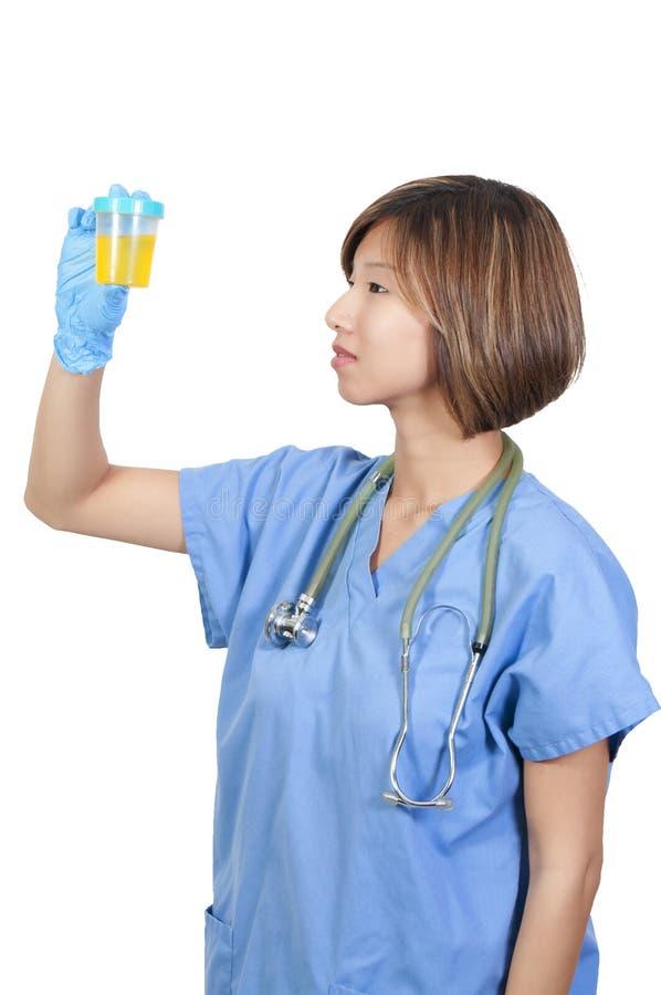 Доктор женщины с пробой мочи стоковые изображения rf