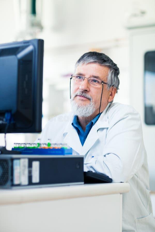 доктор компьютера его старшая таблетка используя стоковые фотографии rf