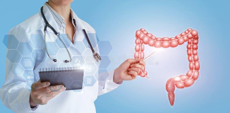 Доктор показывает двоеточие персоны стоковое изображение