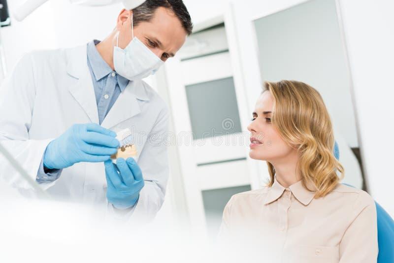 Доктор показывая челюсти моделирует к женскому пациенту в современном стоковое фото