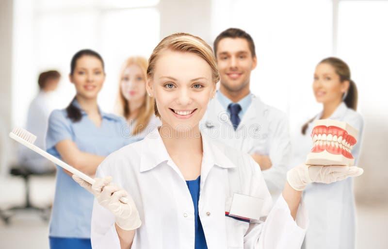 Доктор с зубной щеткой и челюстями стоковая фотография