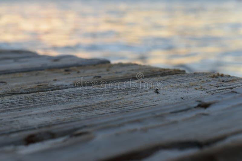 Док в океане Cancun стоковые фотографии rf