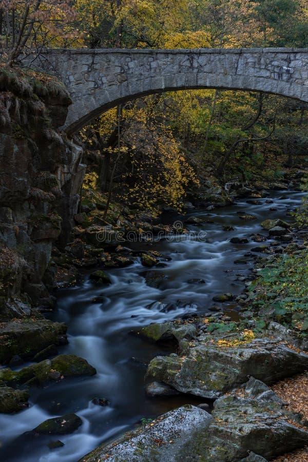 Долгая выдержка водопада с мостом в Harz Заповедник в Германии с камнями стоковое фото rf