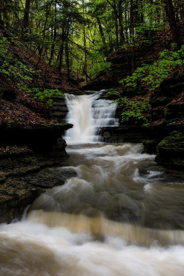 Долгая выдержка - водопад/каскад - весенний сезон - Ithaca, Нью-Йорк стоковые фотографии rf