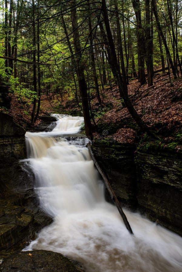 Долгая выдержка - водопад/каскад - весенний сезон - Ithaca, Нью-Йорк стоковая фотография