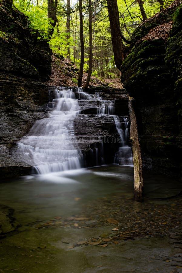 Долгая выдержка - водопад/каскад - весенний сезон - Ithaca, Нью-Йорк стоковое изображение