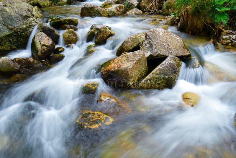 Долгая выдержка воды пропуская между утесами в реке Stanisoara, горами Retezat, около хижины Pietrele, в Румынии стоковые изображения