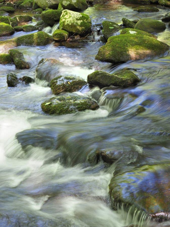 Долгая выдержка маленьких речных порогов реки в больших закоптелых горах национальном парке, Теннесси стоковое изображение rf