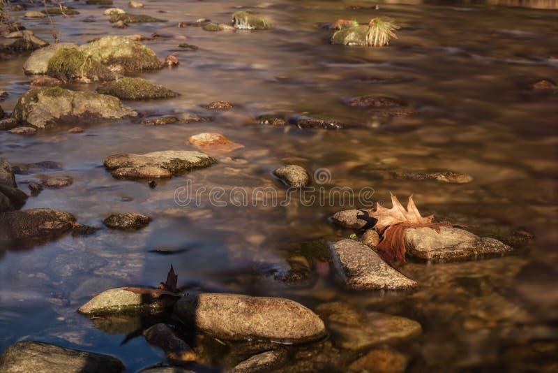 Долгая выдержка на воде в осени стоковые фото
