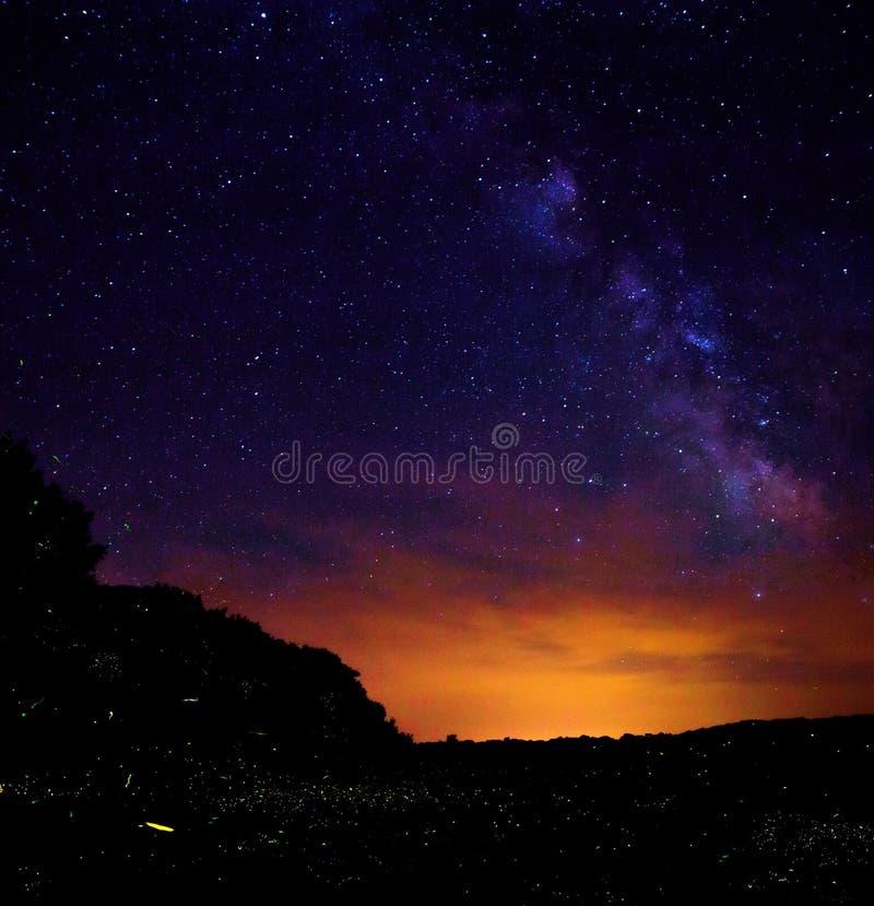 Долгая выдержка огня летает в лес стоковая фотография