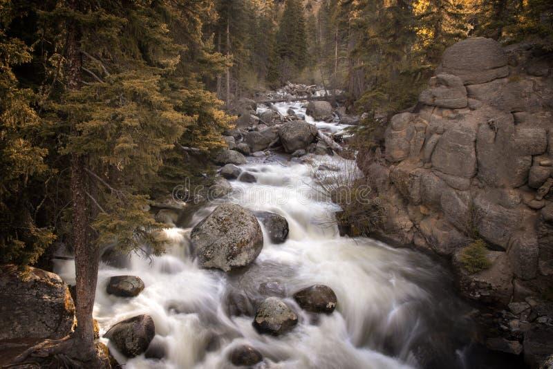 Долгая выдержка сняла потока каскада в Yellowston стоковые изображения