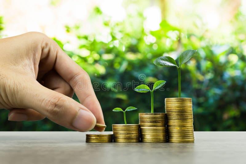 Долгосрочные инвестиции или деньги делать с правыми концепциями Рука бизнесмена кладя на стог монеток на деревянном столе с стоковые изображения