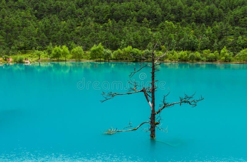 Долина голубой луны, Lijiang, Китай стоковая фотография