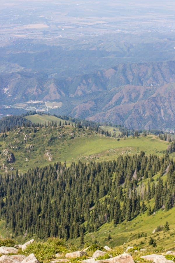 Долина горы летом, Алма-Ата, Казахстаном Взгляд от горного пика Kumbel стоковое фото