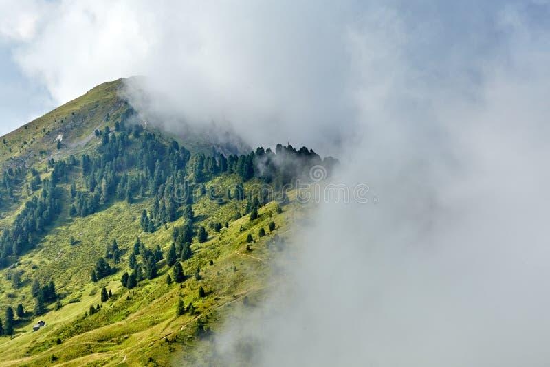 Долина гор Val Gardena с зеленой травой и деревьями стоковая фотография rf